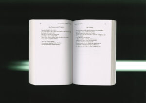 The-Crossdresser-the-Phoenix-Press-image-3-Samuel-Haitz.jpg